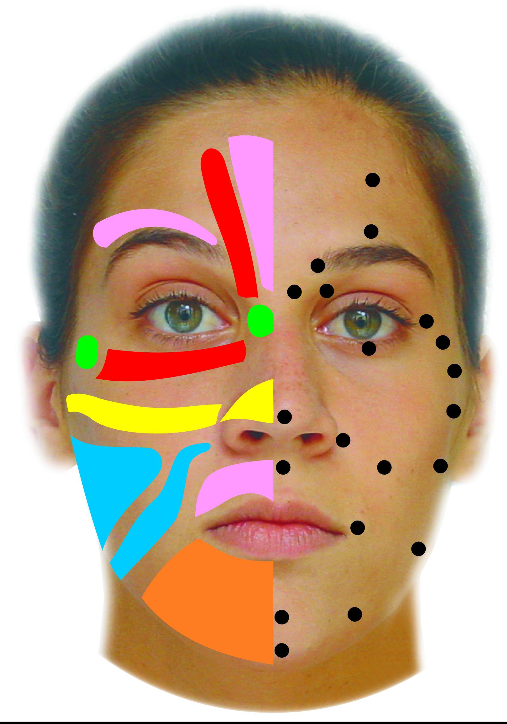 facialreflexology.jpg